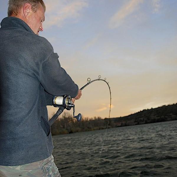 URIAN Sensitive Catfish Rods 3,20 m